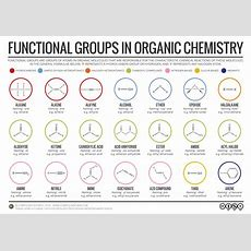 Functional Groups In Organic Chemistry Good Review For