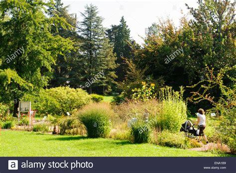 Botanischer Garten Kiel Essen by Botanischer Garten Germany Stock Photos Botanischer