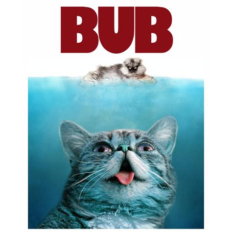 Grumpy Cat Vs Lil Bub  Jokes & Funny Stuff Neowin