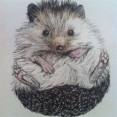 instagram photo  atbiddythehedgehog  inkcom art