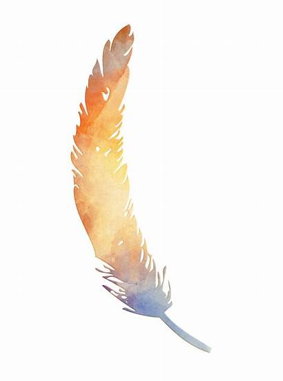 Feather Clipart Watercolor Domain