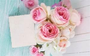 Gelbe Rose Bedeutung : schwarze rosen bedeutung eine winzige schwarze rose idee fr eine kleine rose tattoo rosen ~ Whattoseeinmadrid.com Haus und Dekorationen