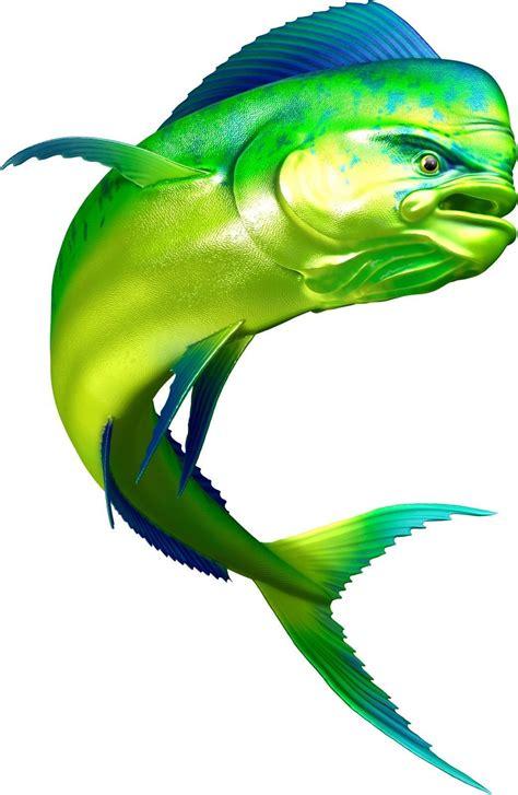 mahi dorado fish fishing color decal  boat