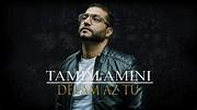 Tamim Amini - Delam Az Tu - Afghan Song 2018 - YouTube