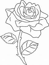 Rose Coloring Clip Pretty Line Sweetclipart sketch template