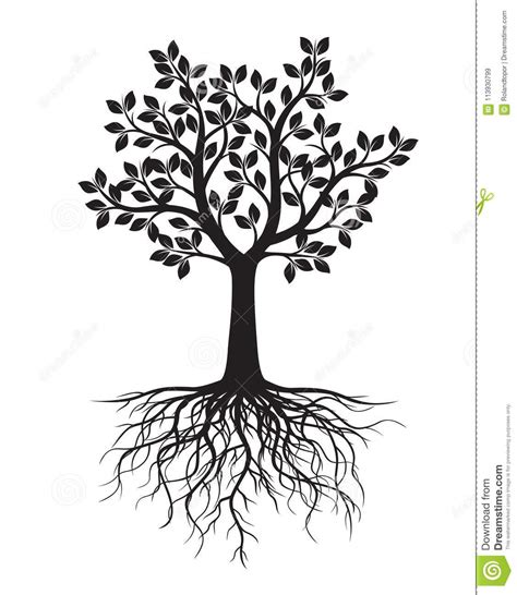 baum mit herzblättern schwarzer baum mit bl 228 ttern und wurzeln stock abbildung illustration abbildung garten