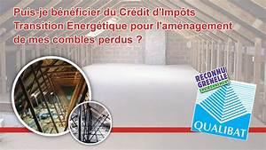 Credit Impot Isolation Combles : isolation des combles impots 2015 d coration de no l ~ Nature-et-papiers.com Idées de Décoration