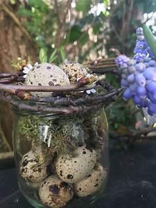 Frühlingsdeko Im Glas : wachteleier fr hlingsdeko ideen ostern ostern eier und wachteleier ~ Orissabook.com Haus und Dekorationen
