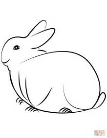 rabbit coloring page  printable coloring pages