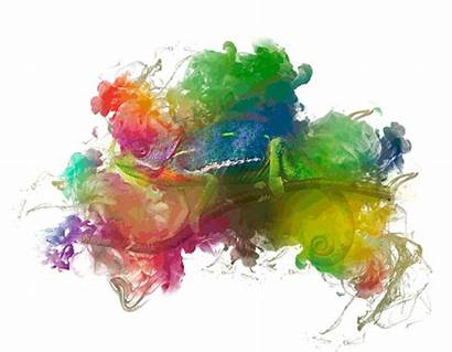 Watercolor Photoshop Getdrawings Watercolors Winners Contest Horse
