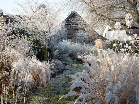 Winter Im Garten by Riether Staudenparadies Romantischer Staudengarten In