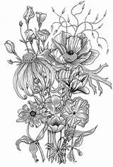 Coloring Behance Notebook Posters Flowers Flower sketch template
