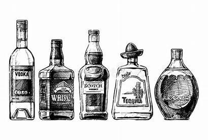 Alcohol Bottles Distilled Beverage Vector Clipart Bottle