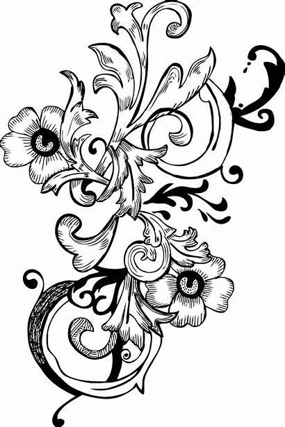 Vector Floral Brush Corner Pack Designs Patterns