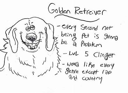 Dog Breed Personalities Breeds Retriever Golden Illustrations