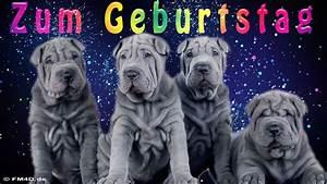 Geburtstagsbilder Zum 60 : lustiges geburtstags video zum geburtstag alles gute zum geburtstag youtube ~ Buech-reservation.com Haus und Dekorationen