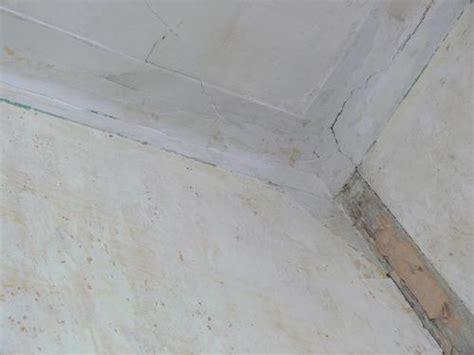 besoin conseil r 233 novation plafond murs voile de verre boiseries