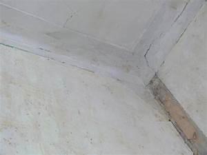Toile De Rénovation Mur : renovation plafond toile de verre r novation des plafonds choisissez la toile de verre pour ~ Melissatoandfro.com Idées de Décoration