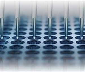 TaqMan® Affordability | Thermo Fisher Scientific