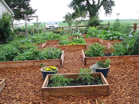 great raised garden garden ideas