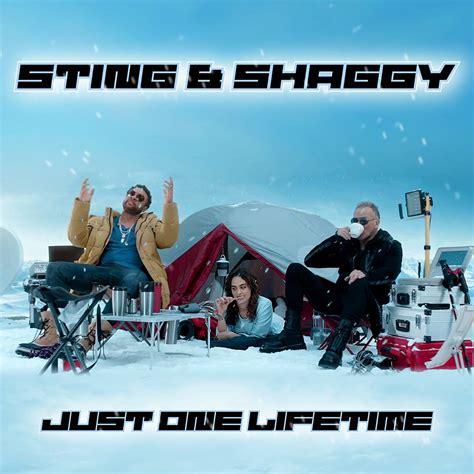 sting shaggy   lifetime video testo