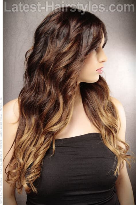 dark brown hair with light brown tips brown hair colored tips brown hairs