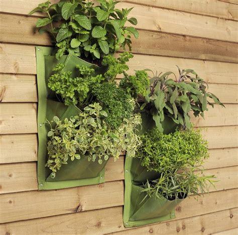 Vertikaler Garten Indoor by Indoor Vertikaler Garten Bringen Sie Die Natur Zu Hause
