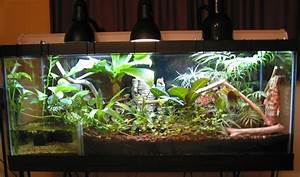 kingsnake.com photo gallery > Cages, Terrariums, Ponds ...