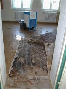 Ausgleichsmasse Auf Holz : folgesch den durch feuchtigkeit an den baustoffen ~ Frokenaadalensverden.com Haus und Dekorationen