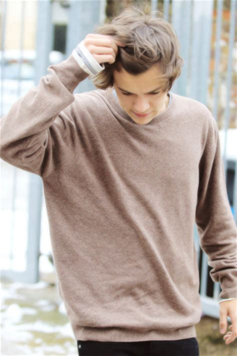 harry styles sweater sweater harry styles wheretoget