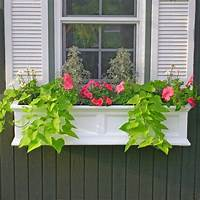 flower boxes for windows How to Add Fabulous Curb Appeal with Flower Box Ideas