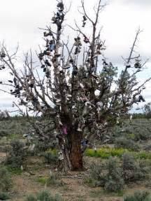 Bend Oregon Shoe Tree