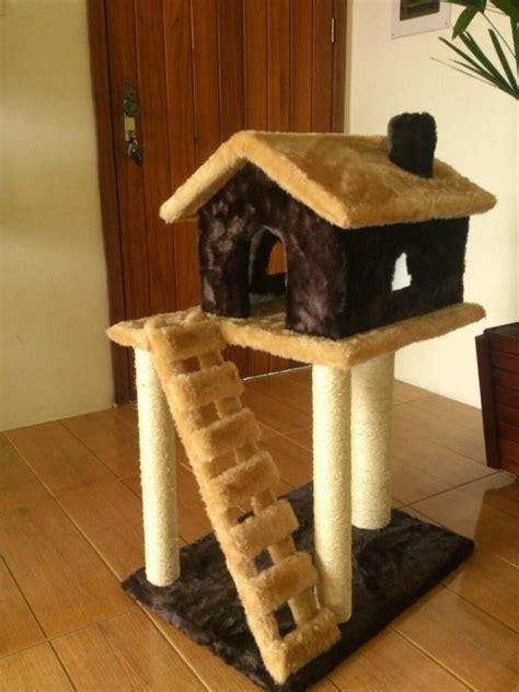 las  casas mas curiosas  tu mascota en este  del gato