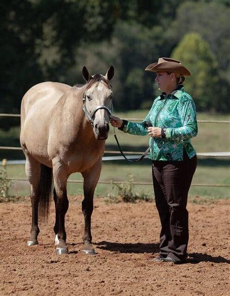 horse calm nervous flickr via ways katherine mustafa source ihearthorses