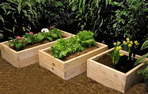 exclusive decor simple raised garden bed decosee