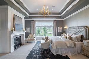 Gray Bedroom with Tray Ceiling - Transitional - Bedroom