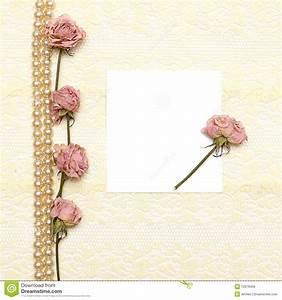 Background With Cream Lace, Pearls And Flower Royalty Free ...