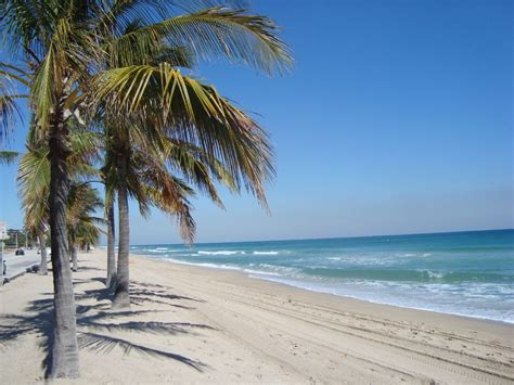 fort lauderdale beach driverlayer search engine