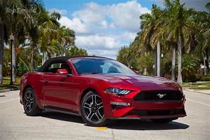 2019 Ford Mustang 4-cylinder Convertible | Top Speed