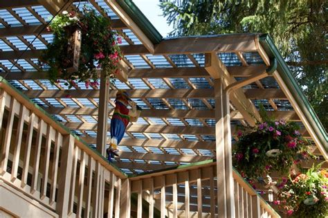 clear corrugated roof panels give us a clear view to the