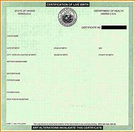 Best 25 ideas about birth certificate template find what youll blank birth certificate yadclub Choice Image