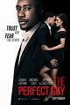 The Perfect Guy DVD Release Date   Redbox, Netflix, iTunes ...