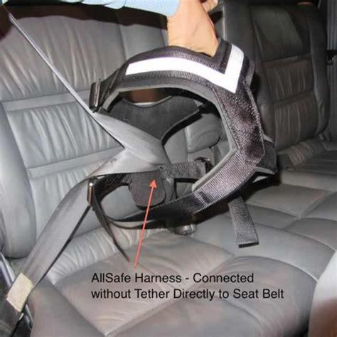 allsafe harness dog seat belt  north america