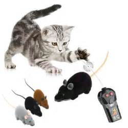 remote cat new remote rc rat mouse wireless for cat pet