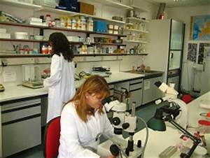 Marine Ecology Lab: Facilities