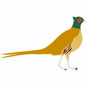 Pheasant Hunting Clipart