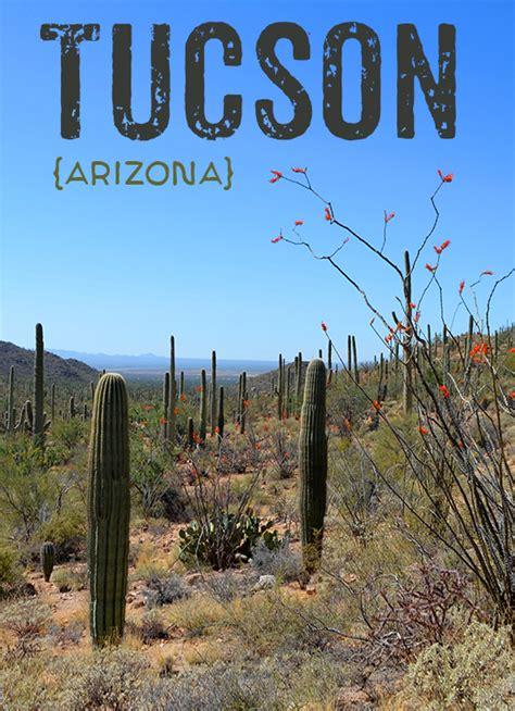 Tucson :: Arizona-Sonora Desert Museum, Saguaro National ...