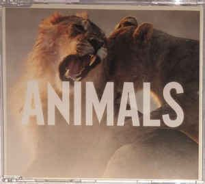 maroon  animals cd single discogs