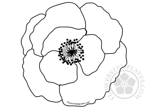 poppy flower template coloring page flowers templates