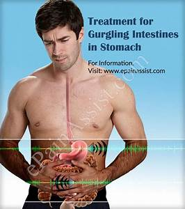 Gurgling Intestines  What Causes Your Stomach To Growl
